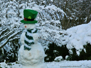 The Alleghany Rattler: Greetings from the leprechaun