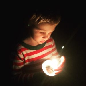 Blog Series: From Camp Director to Camp Parent: Booking My Son's First Sleepaway Camp Session