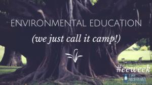 A Summer Full of Environmental Education