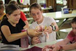 Activity Series: All About Cooking Class at 'Ghany