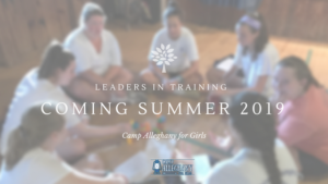 Leaders-In-Training 2018 Update: What an LIT Summer Will Look Like (Still Developing)
